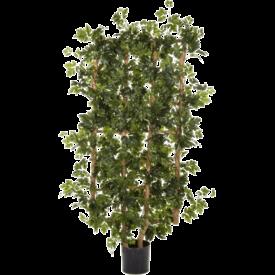 Fleur.nl - Cissus Fence heg - kunstplant