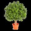 Boxwood Ball Small - kunstplant