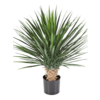 Yucca Rostrata - kunstplant