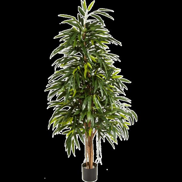 Longifolia Royal Natural - kunstplant