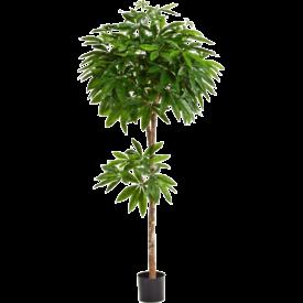 Fleur.nl - Pachira Tree - kunstplant