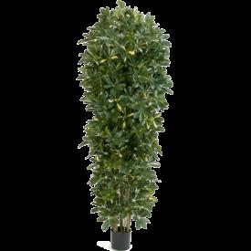 Fleur.nl - Schefflera Gold Capella - kunstplant