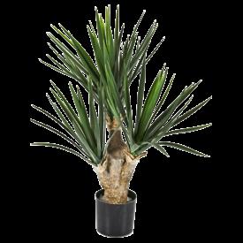 Fleur.nl - Yucca Baby (3) - kunstplant