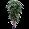 Longifolia Liane de Luxe - kunstplant