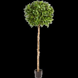 Fleur.nl - Laurus Nobilis XL - kunstplant