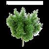Crossostephium - kunstplant