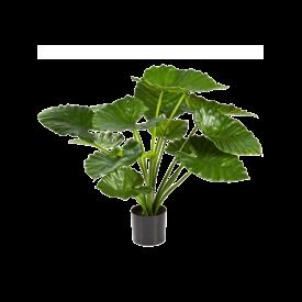 Fleur.nl - Alocasia Calidora - kunstplant