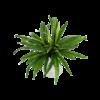 Asplenium - kunstplant