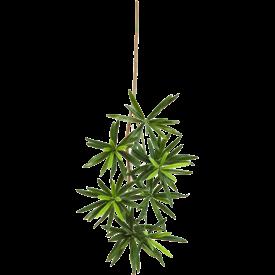 Fleur.nl - New Podocarpus Spray Small - kunstplant