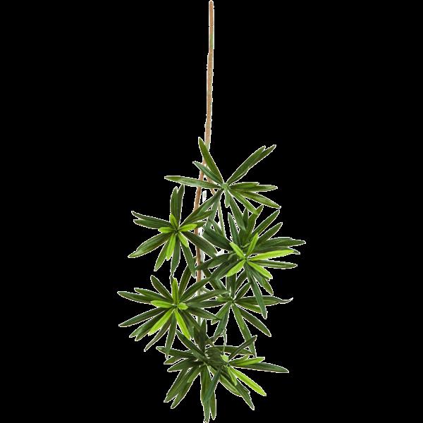 New Podocarpus Spray Small - kunstplant