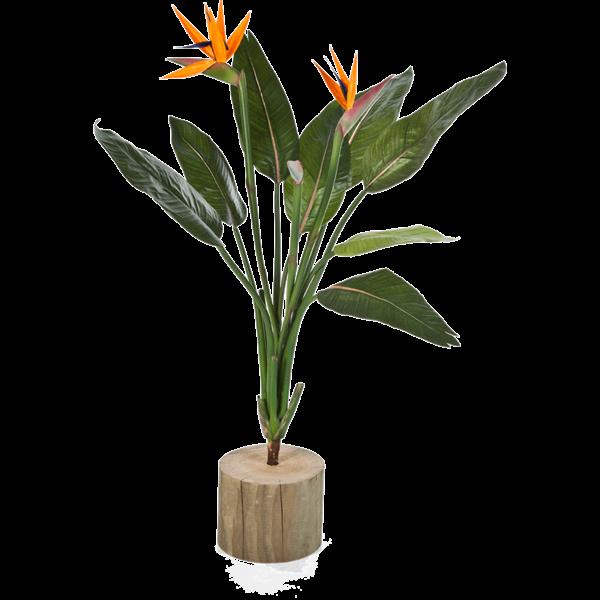 Strelitzia Reginae Small - kunstplant