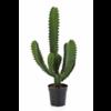 Finger Cactus - kunstplant