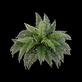 Fleur.nl - Fern Bush - kunstplant