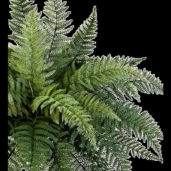 Fern Bush - kunstplant