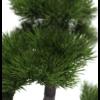 Bonsai Pinus - kunstplant