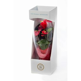 Fleur.nl - Anthurium Rood in vaas Majest Small