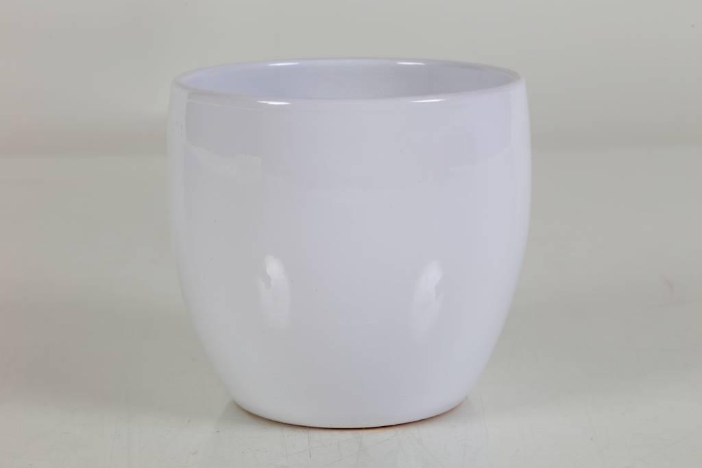 Plastic Bloempot Wit.Bloempot Wit Eenvoudig En Snel Online Bestellen Fleur Nl
