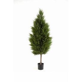 Fleur.nl - Cypres Tree - kunstplant