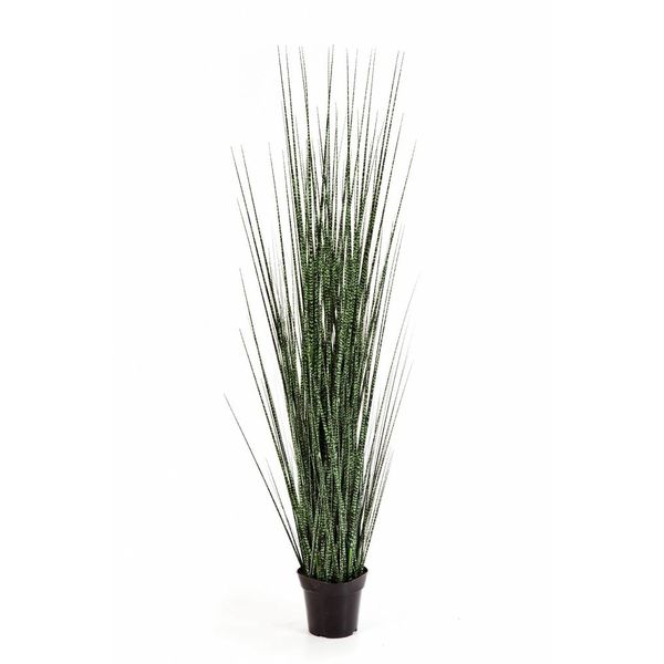 Zebra Gracilis Grass - kunstplant