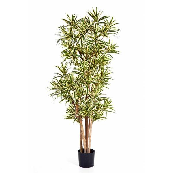 Dracaena Reflexa - kunstplant