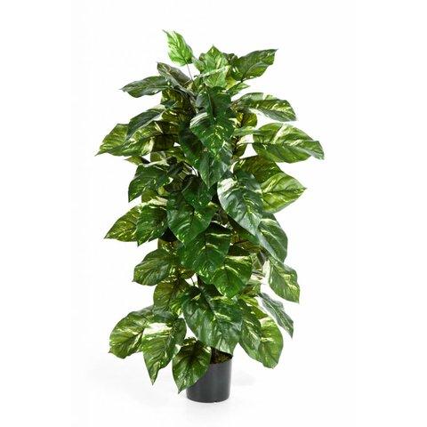 Pothos - kunstplant
