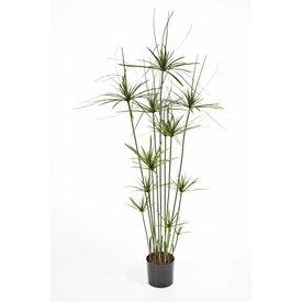 Fleur.nl - Papyrus Tree - kunstplant