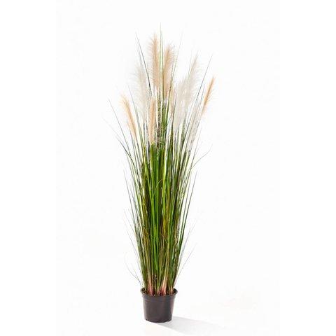 Grass Reed - kunstplant