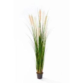 Fleur.nl - Grass Reed - kunstplant