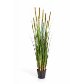 Fleur.nl - Grass Foxtail Yellow - kunstplant