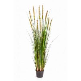 Fleur.nl - Grass Foxtail Yellow XL - kunstplant