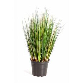 Fleur.nl - Grass Foxtail - kunstplant