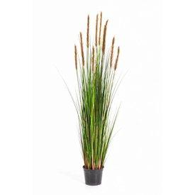 Fleur.nl - Grass Foxtail Orange/Brown XL - kunstplant