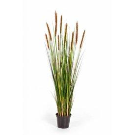 Fleur.nl - Grass Foxtail Orange/Brown - kunstplant