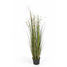 Fleur.nl - Grass Coral Cream - kunstplant