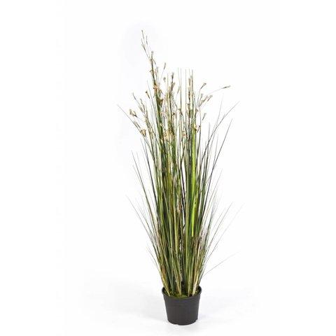 Grass Coral - kunstplant