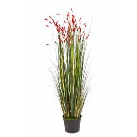 Fleur.nl - Grass Coral Red - kunstplant