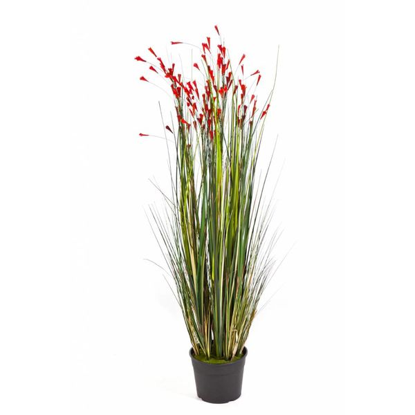 Grass Coral Red - kunstplant