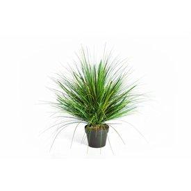Fleur.nl - Grass Onion Green - kunstplant