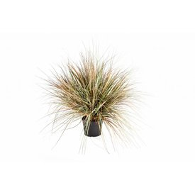 Fleur.nl - Grass Onion - kunstplant