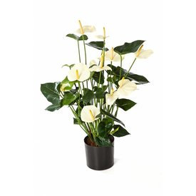 Fleur.nl - Anthurium de Luxe White - kunstplant