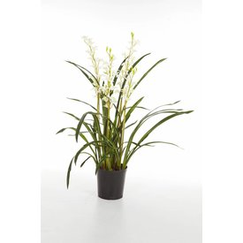 Fleur.nl - Cymbidium Wild Orchid - kunstplant