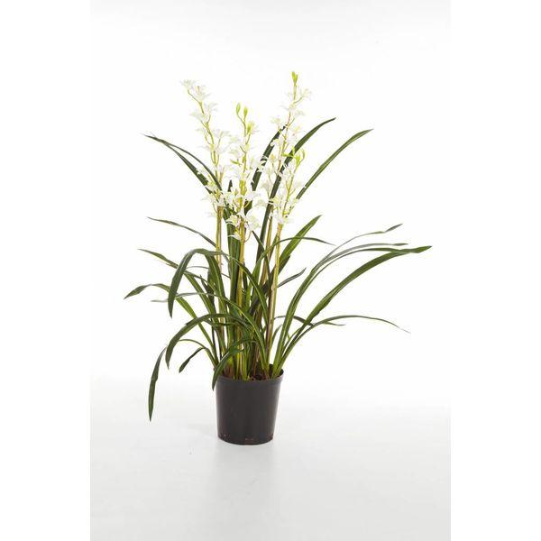 Cymbidium Wild Orchid - kunstplant