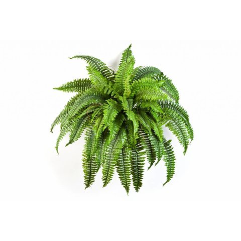 Boston Fern - kunstplant