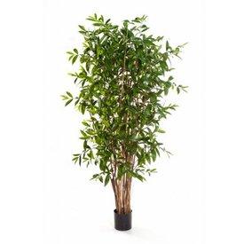 Fleur.nl - Dracaena Surculosa Tree - kunstplant