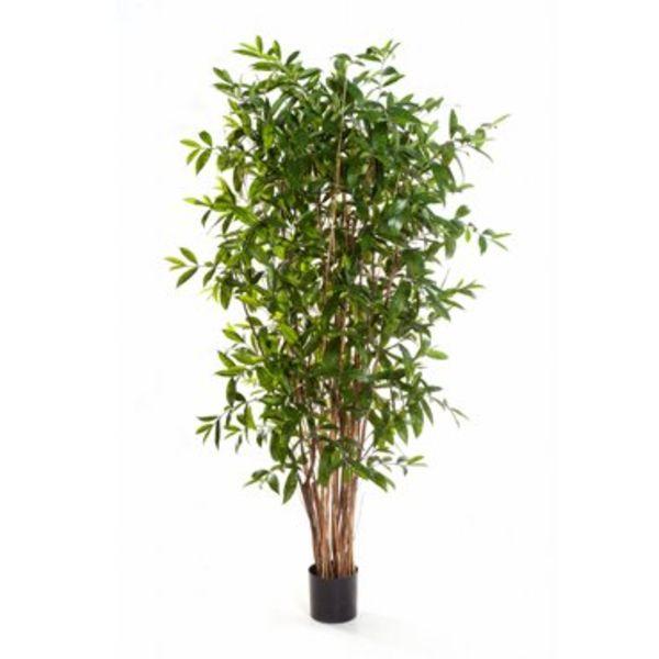 Dracaena Surculosa Tree - kunstplant