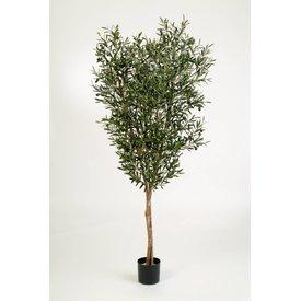 Fleur.nl - Natural Olive - kunstplant