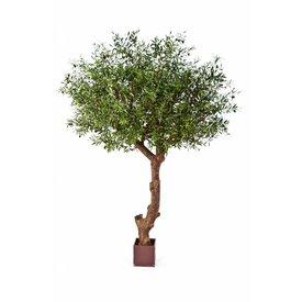 Fleur.nl - Natural Olive Tree Poly - kunstplant