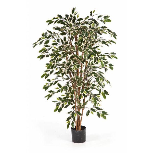 Ficus Nitida variegata - kunstplant
