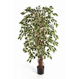 Fleur.nl - Ficus Liana variegata - kunstplant
