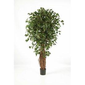 Fleur.nl - Ficus Liana Exotica - kunstplant
